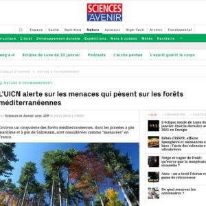 L'UICN alerte sur les menaces qui pèsent sur les forêts méditerranéennes